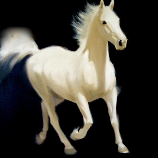 Jen Collee White Horse